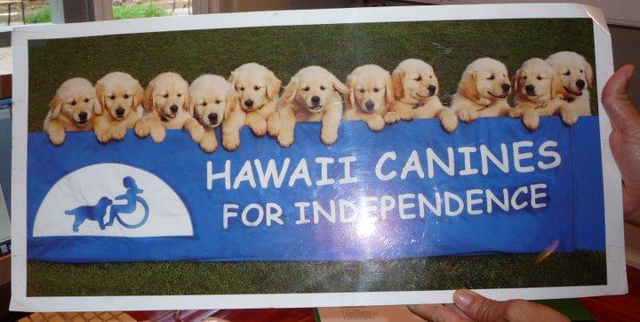 hawaiicanine1