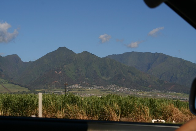 driving-on-maui-2