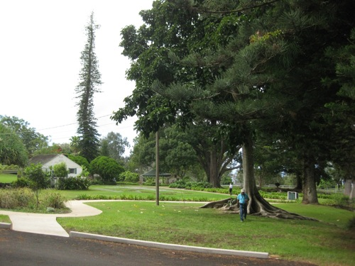 9-18-09 ernie rezents checking trees for tour