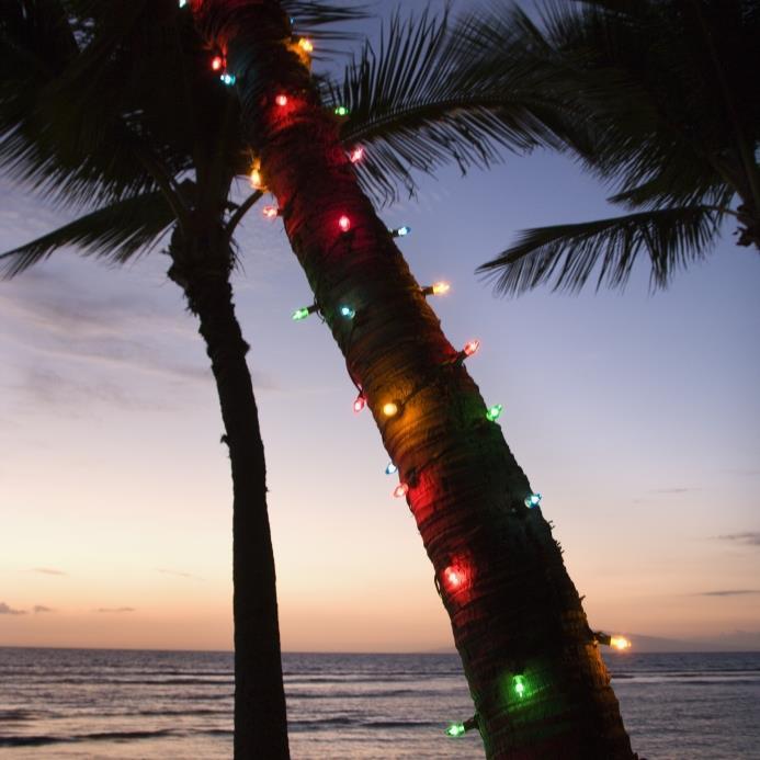 White Sand Christmas, A Merry Maui Christmas