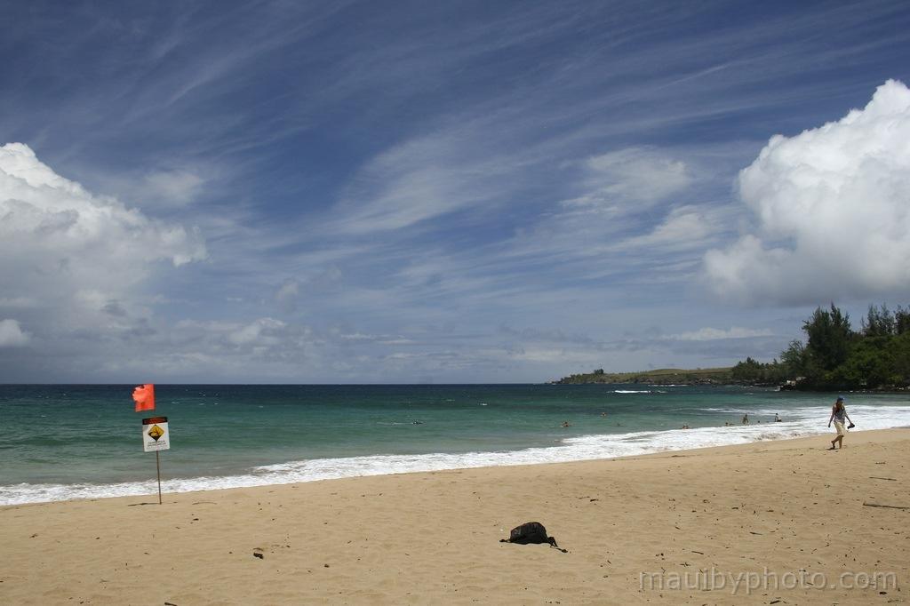 DT Flemming Westside Maui