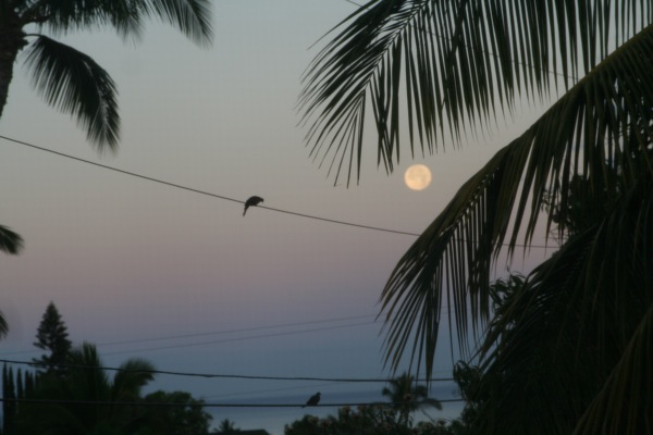 Super Moon Moonset Maui