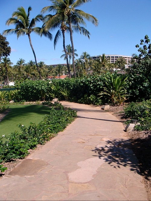 Wailea walking at