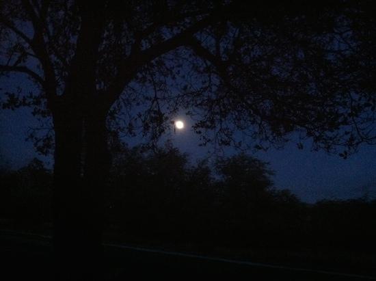 Full Moon on Maui 6