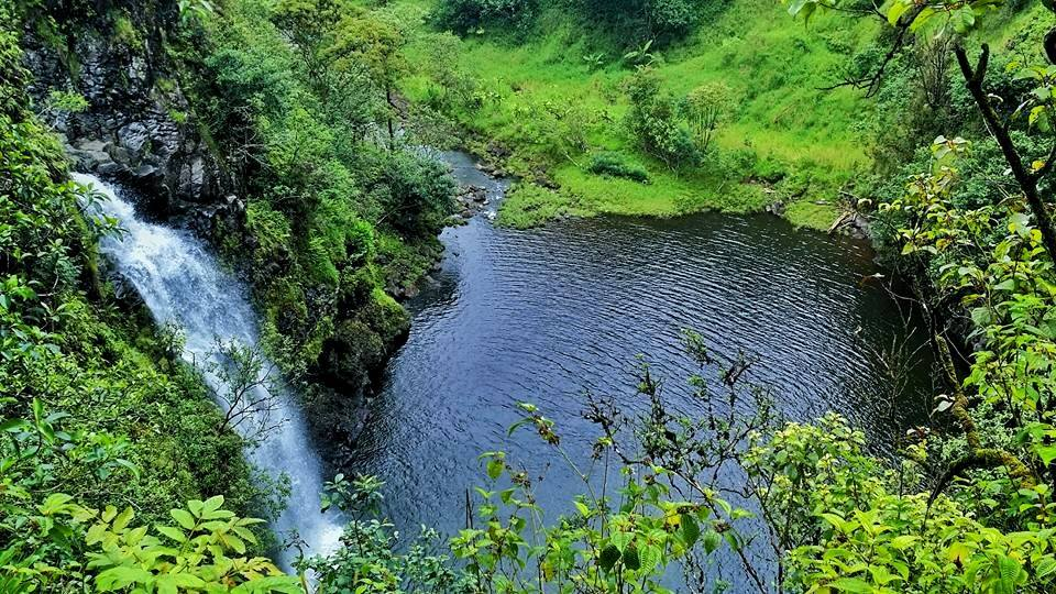 waterfalls hana maui 6