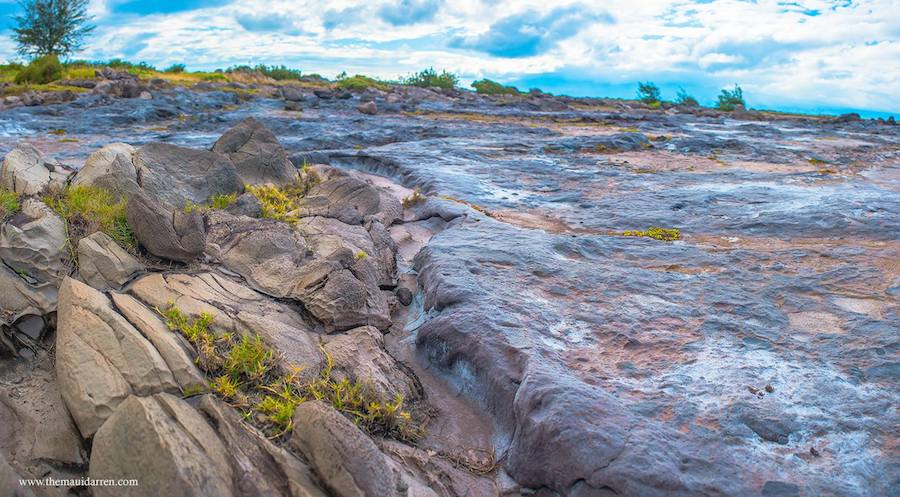 Dragon's Teeth Maui 1