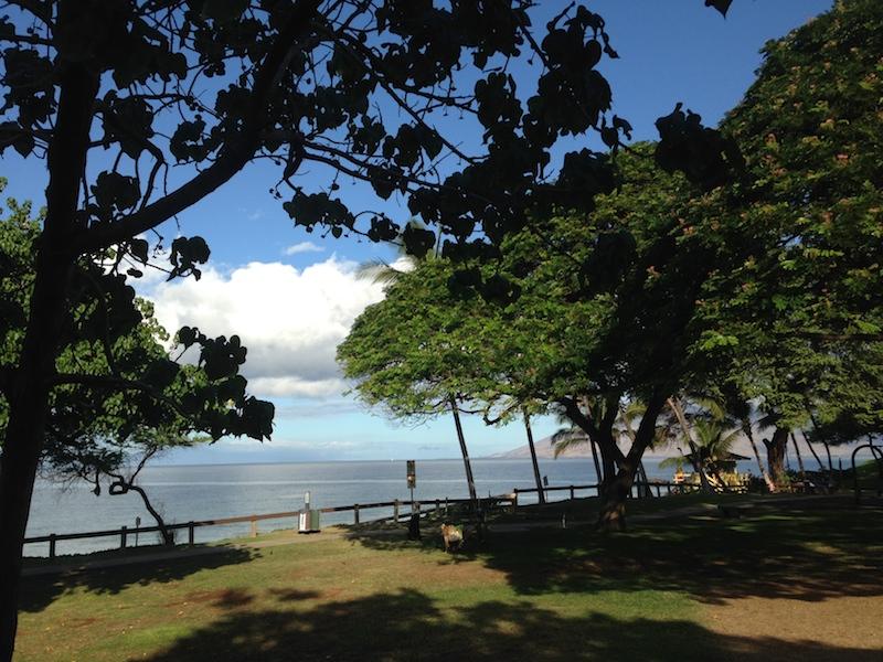 Kam III Maui