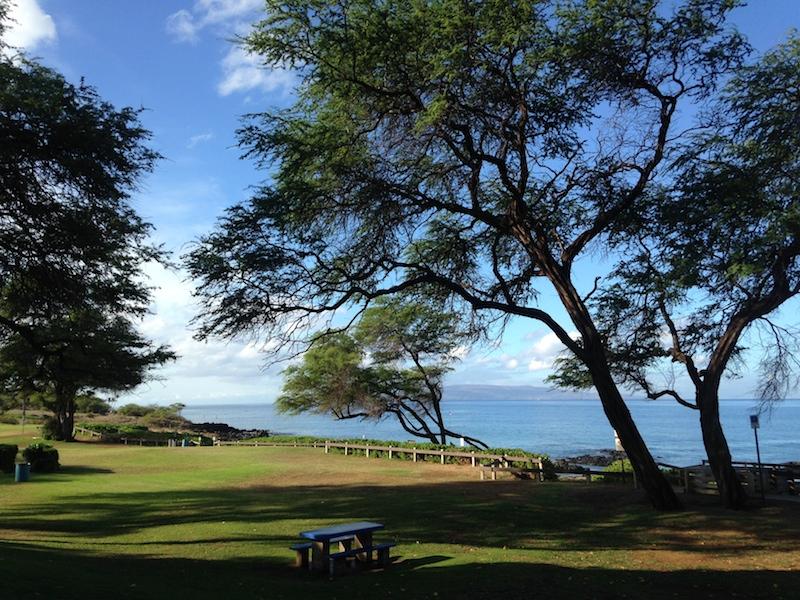 Kamaole Beach III (1)