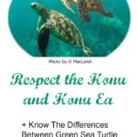 Respect The Honu and Ea